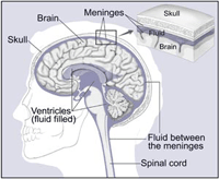 Image Guided Radio-Therapy Treatment