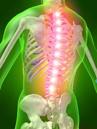 Spine Procedure